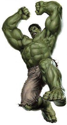 """23.6""""x44"""" Huge Hulk Avengers Decal Removable Wall Sticker Home Decor Art Comics"""