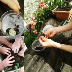Stamattina a #tonezza ci siamo divertiti osservando la natura come veri Scienziati! #scienceforkids #summer #tonezzatu