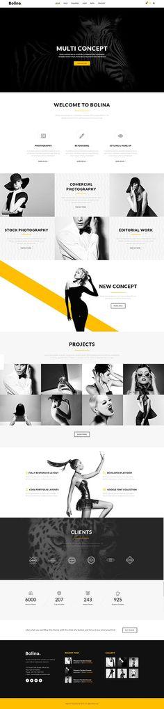 Bolina – Multipurpose WordPress Theme