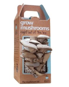 So cool - A DIY Mushroom Kit - Grows in just 10 Days. Great for teaching kids about growing their own food.