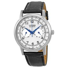 Citizen Eco-Drive Stainless Steel Black Leather Mens Watch AO9000-06B #Citizen