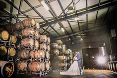 Michelle Dean Photography - Millbrook Winery
