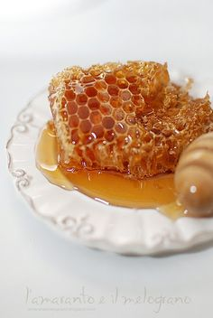 Since cane sugar was a luxurious commodity, honey was a common sweetener in foods during the Renaissance.