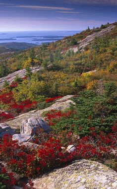 Cadillac Mountain   Travel   Vacation Ideas   Road Trip   Places to Visit   Acadia National Park   ME   Monument   Natural Feature   Hiking Area   Scenic Point