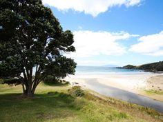 MATAKANA AREA BEACH - Tawharanui North Island NZ