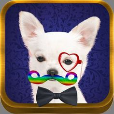 Awesome new Mustache Me App.  Add over 100 items to photos.  Tons of mustaches in different colors, glasses, hats, bowties and more.  Fun!  http://mustachemeapp.com/