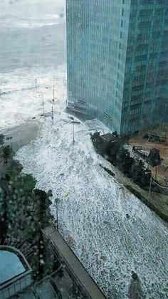 Video nhà, ôtô trôi như thuyền giấy trong mưa bão ở Hàn Quốc