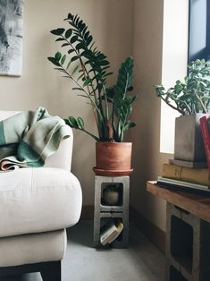 cinder block ideas 36 DIY Plant Stand Ideas for Indoor and Outdoor Decoration Tall Plant Stands, Modern Plant Stand, Diy Plant Stand, Tall Plant Stand Indoor, Modern Apartment Decor, Modern Decor, Modern Design, Interior And Exterior, Interior Design