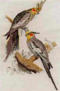 Cockatiels cross stitch kit