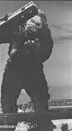 Kong looks for a friend in KING KONG VS GODZILLA