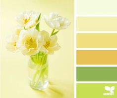 design seeds on Bloglovin
