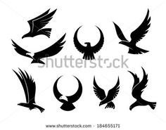 Set of black silhouettes of graceful flying eagles with their outspread wings for heraldry and hunting design - stock vector