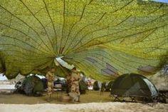 Mali: larmée française chasse un groupe armé dune ville du nord-est