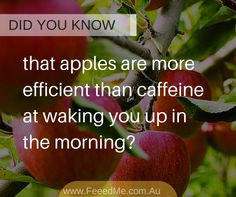 did u know that apples are more efficient than caffeine at waking you up in the morning
