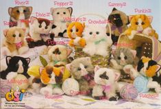 """Kitty kitty kittens, OMG! I have no idea where it ended up but my favorite animal was one of these! I also had an adorable puppy! The kitties had something in their head that rolled around to make a """"purr"""" sound. haha!"""