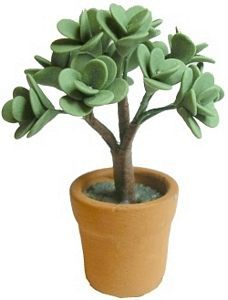 Jade Plant in Clay Pot - This simple miniature Jade plant is in one inch (1/12th)
