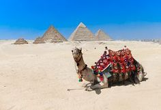 pic of great pyramids - pyramids with a beautiful sky of Giza in Cairo - JPG