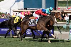 European invader Queen's Trust denied Lady Eli a rousing finish to her fairytale comeback from laminitis, getting her nose down just in time to take the $2 million Breeders' Cup Filly & Mare Turf (gr. IT) Nov. 5 at Santa Anita Park.