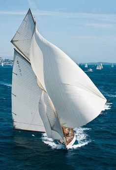 Some sailing porn to get psyched for the weekend. Mariquita.  Photo by Franco Pace