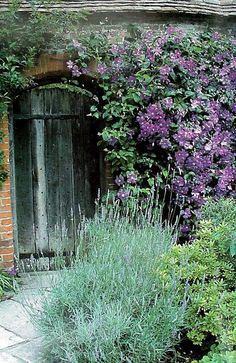Gypsy Purple home. garden aesthetic Gypsy Purple home. Secret Garden Door, Garden Doors, Garden Gates, Garden Entrance, Patio Doors, Purple Home, Ivy House, Garden Cottage, Plantar