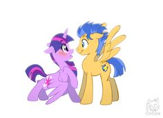 Twilight Sparkle and Flash Sentry My little pony