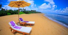 Taya Finch, a luxury tour agent in Sri Lanka, is a dream destination for guests from around the world. With selected boutiques, resorts, activities and food, we make your holiday the most reminisced of all.