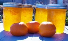If you love the taste of the creamsicle ice cream you will love this recipe for creamsicle jelly. Made with fresh orange juice and vanilla beans it tastes so much like a creamsicle. It is delicious spread on just about any bread, biscuit or muffin you can think of. Kellis Kitchen shares the recipe and …