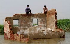 Flood in Pakistan. Fascinating photojournalism.