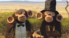24 Best Madagascar images in 2013 | Madagascar, Madagascar movie