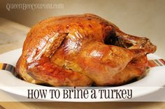 How to brine a turkey before you roast it {perfect Thanksgiving turkey recipe}