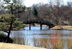 4.Visit the Missouri Botanical Gardens.