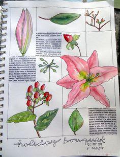 from my sketchbook ~ flowers | by janelafazio