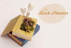 Book Planter fr succulents