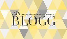 UT blog header.