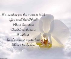 Looking for romantic good morning poems for her to compliments her by a beautiful poem and surprise your girlfriend or wife with this sweet lines. Morning Poem For Her, Flirty Good Morning Quotes, Positive Good Morning Quotes, Good Morning Quotes For Him, Good Morning Inspirational Quotes, Good Morning Love, Good Morning Greetings, Quotes Positive, Cute Love Poems