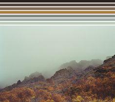 Oliver Niemann | natural palettes