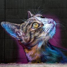 Street Art by Caktus & Maria