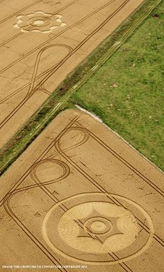 All Crop Circles : The 2014 Season ! by Psychedelic Adventure Crop Circle at Green Street, near Avebury, Wiltshire UK : 8th August 2014