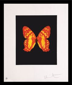 Emerge - Butterfly. - HIRST, Damien. - Peter Harrington Rare & First Edition Books