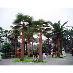 TAHSD-13 Artificial Washington Palm Tree Made in Guangzhou China