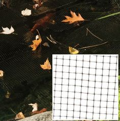 "Black Pond Netting 28 ft x 28 ft by Dalen Products. $32.99. Floating, multi-purpose netting eases pond maintenance. Durable, black polypropylene netting with 3/8"" mesh keeps goldfish, koi, and other water feature fish safe from predators. Also catches leaves and other debris before it can enter your pond and foul its water. Virtually invisible against water to retain your pond's beauty. Mesh boasts UV-inhibitors to prevent breakdown from the sun. When leaves catch..."
