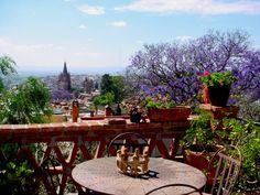 Jacarandas in April, San Miguel de Allende