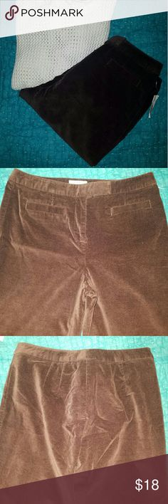 NWT Talbots Brown Velveteen Pants Brown velveteen stretch pants from Talbots. Two pockets in front. None in back. Cotton spandex. Size 6. Waist 15 inches flat. Inseam 31 inches. Leg opening 8 inches. Machine washable. New with tags. Talbots Pants Straight Leg