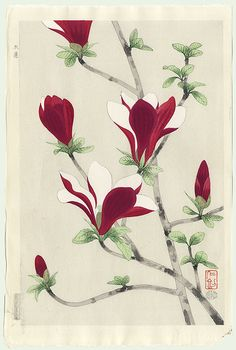 Original Nisaburo Ito, Japanese painter 1910 – 1988, Japanese Woodblock Print. Magnolia