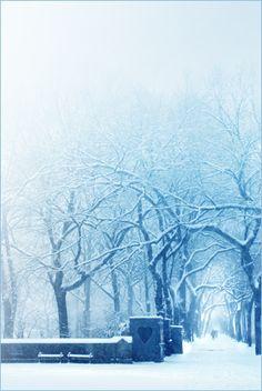 Snow!!! yay !!!!! ;-)))