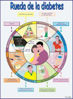 Como en la diabetes intervienen distintos factores, debemos tenerlos en cuanta para un manejo óptimo.