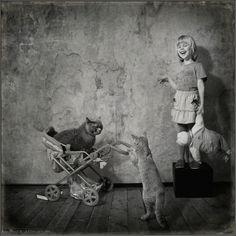 cats&kids.