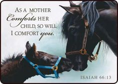 FB page - The Word of Life Explained ♥  Isaiah 66:13