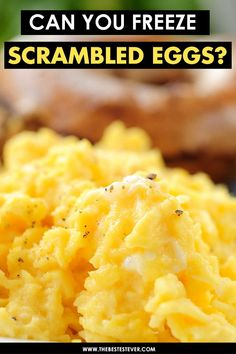 Can You Freeze Scrambled Eggs? It Is Pretty Easy to Do - If you are looking at if it is possible to freeze scrambled eggs, then we got that answer for you. Can You Freeze Eggs, How To Cook Eggs, Frozen Breakfast, School Breakfast, Breakfast Pizza, Breakfast Bowls, Freezer Eggs, Freezer Cooking, Amigurumi