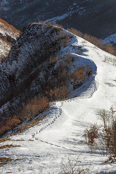 Monte Nerone Marche